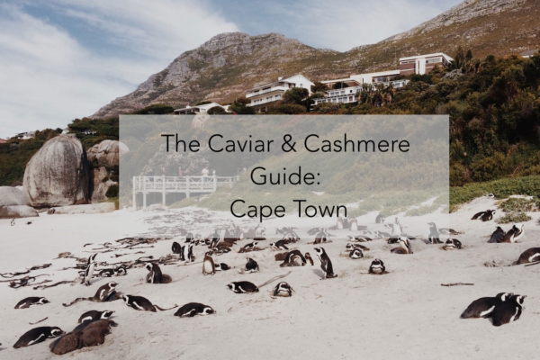 City Spotlight: Cape Town